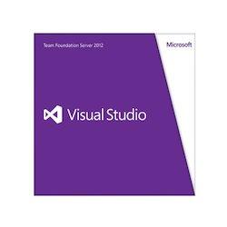Microsoft VSTeamFndtnSvrCAL...